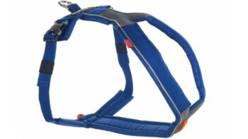 2051 42987 350x197 - Non-Stop Line Harness, blå
