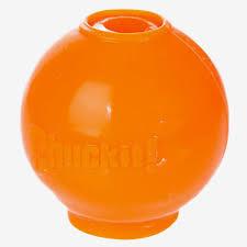 2051 43042 - Chuckit Hydro Freeze Ball, Large