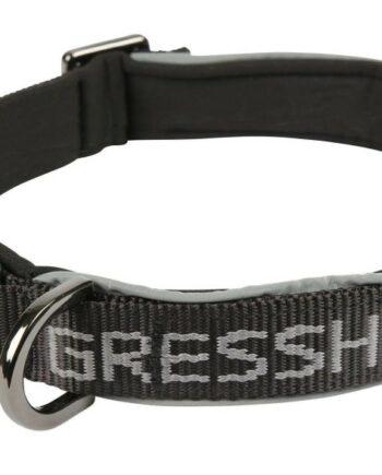 2051 47956 350x435 - Gresshoppa Rjukan neopren halsbånd, Gray