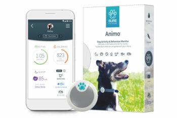 2051 52269 350x233 - Dog Animo Behaviour Monitor