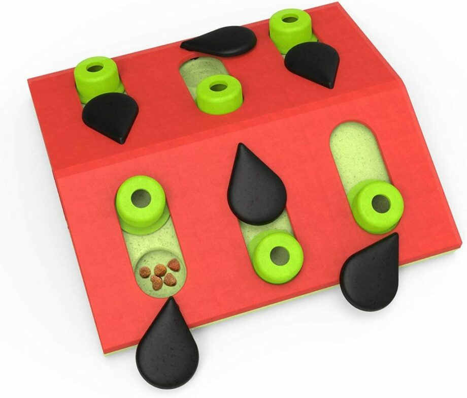 2051 52502 920x783 - Cat Melon Madness Puzzle & Play
